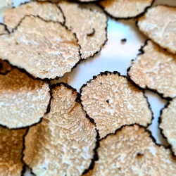 Fresh Seasonal Truffles