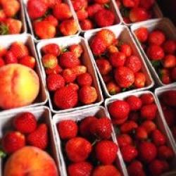 fresh local fruit