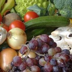 fresh & organic