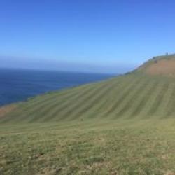 walks & pastures