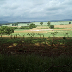 Lovely views from PYO fields