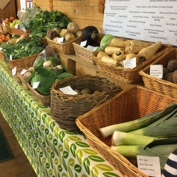 Display of seasonal vegetables