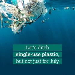 cut down on plastic