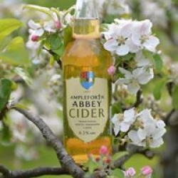real cider from apples
