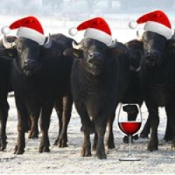 Christmas Buffalo