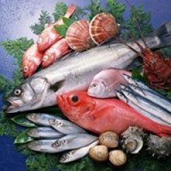 Weekly Fresh Fish
