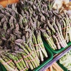 fresh seasonal veg