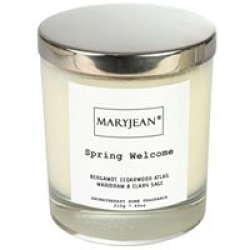 Home Decor Natural Home Fragrance with Essential Oils