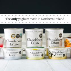 our yoghurt