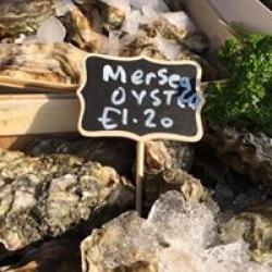 Fresh English Oysters