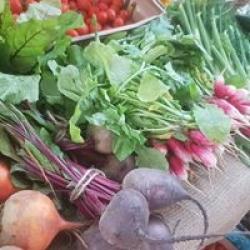 fresh local veg