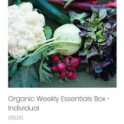 Weekly veg boxes