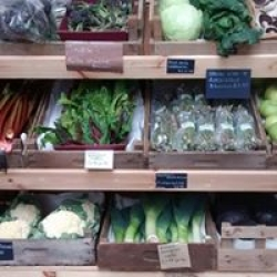 Home grown & local veg