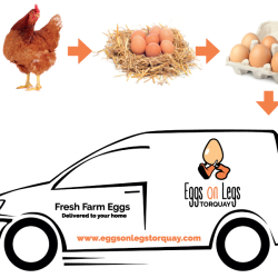 Eggs on Legs Torquay - Free Range Hen & Duck Eggs Delivered Free To Your Home