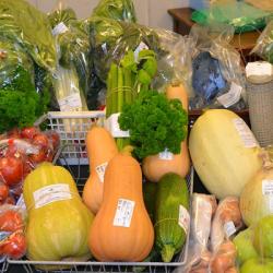 Selection of seasonal Vegetables