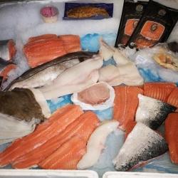 Choice of Fish