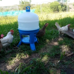 Fresh Clean Water for hot sunny days
