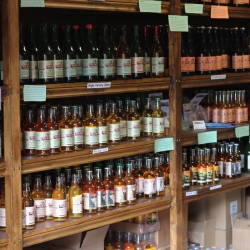 Our Cider Shop, at the Yew Tree, Peterstow.