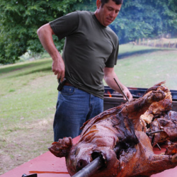 hog roasts