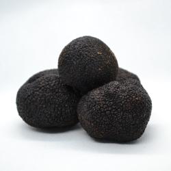 1st Class Fresh Truffles