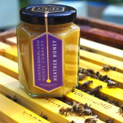 Northumberland Honey Heather