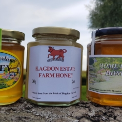 BLAGDON & LOCAL HONEY