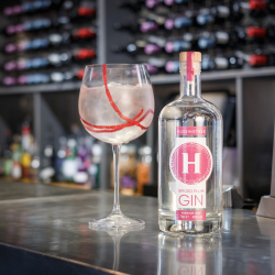 Hussingtree Spiced Plum Dry Gin