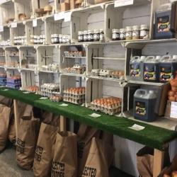 our shop