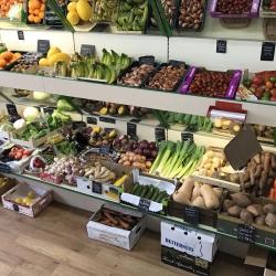 fresh produce daily