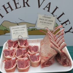lamb from the South Downs