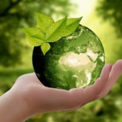 reduce carbon