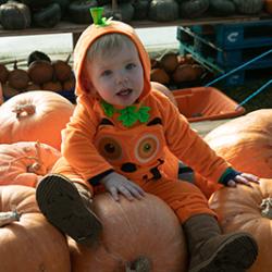 Pumpkin Fest 2018