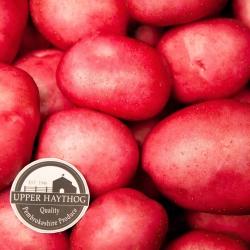 Rudolph Potatoes