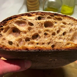Sourdough crumb - The Prior's White Flour