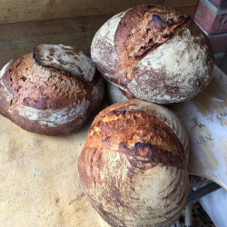 Quality Loaves made with the Prior's Flour