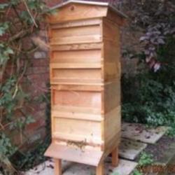 High hive