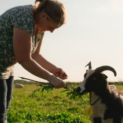 Our farmer Hannah who does anything for her animals. Here, with one of her ewes