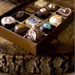 Box of 12 handmade chocolates