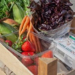 Farm Direct Veg Box