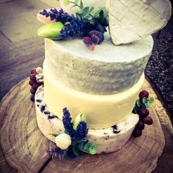Celebration cheese cakes