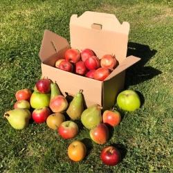Elwell Fruit Farm