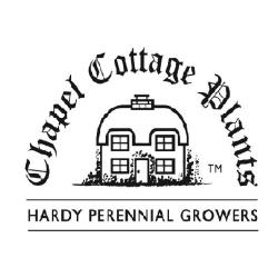 Chapel Cottage Plants Ltd