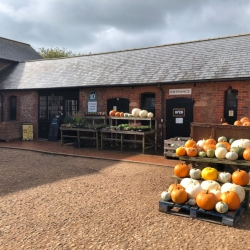 Pynes Farm Shop