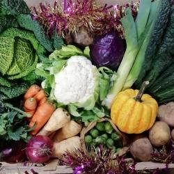 Sarah Green's Organics
