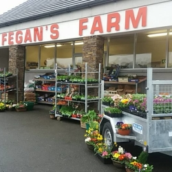 Fegan's Farm Shop