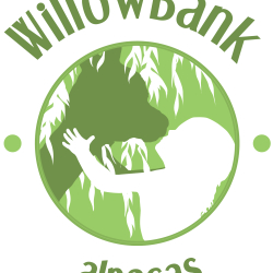 Willowbank Alpaca Stud
