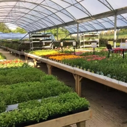 Avalon Garden Centre & Farm Shop