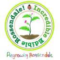 Incredible Edible Rossendale