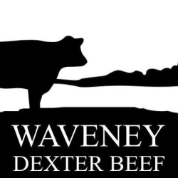 Waveney Dexters