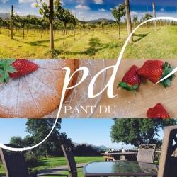 Pant-Du Cyf
